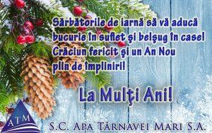 felicitare APA TM